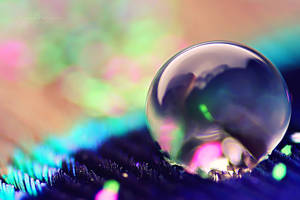 Fluorescent Word by SheilaMB-Photography