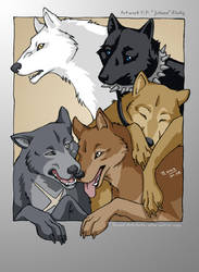 WR - Pack of Five