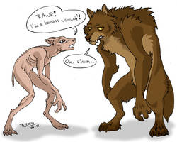 About HP movies and Werewolves