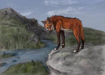 Foxfire by Neovirah
