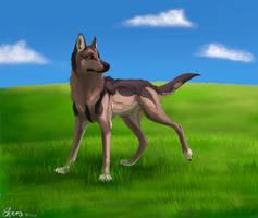 Shepherd by Neovirah