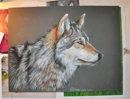 Wolf- by Neovirah