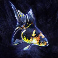 2021 03 17 Fish