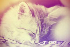 Sleepin by Zzzeebra