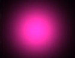 magenta bright by kikipurplepuppy