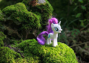 Rarity in the Fantasy Forest