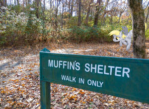 Muffin's Shelter