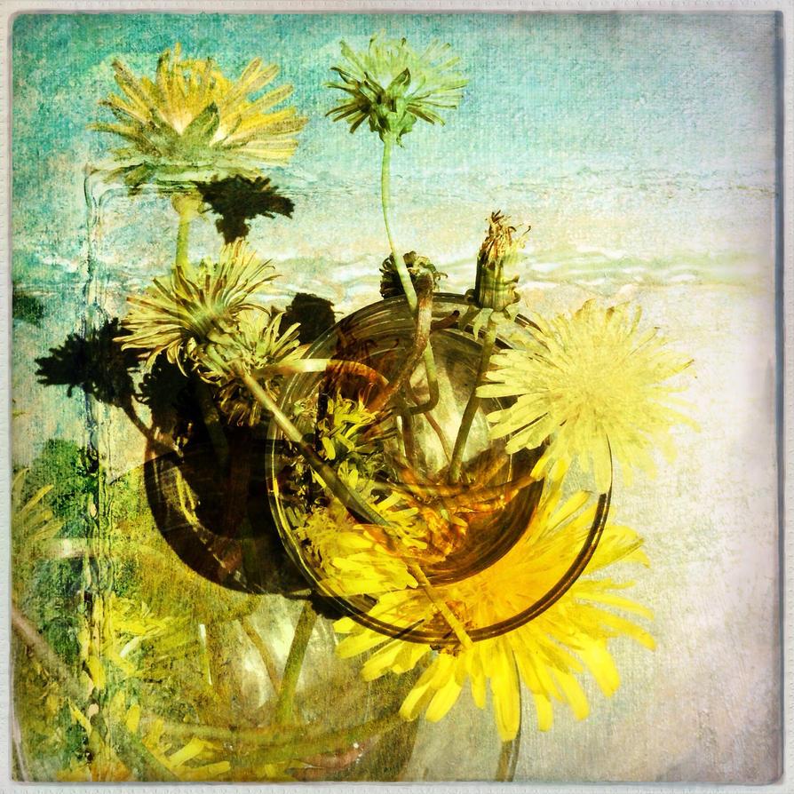 Dandelion passion by JF Dupuis by jfdupuis