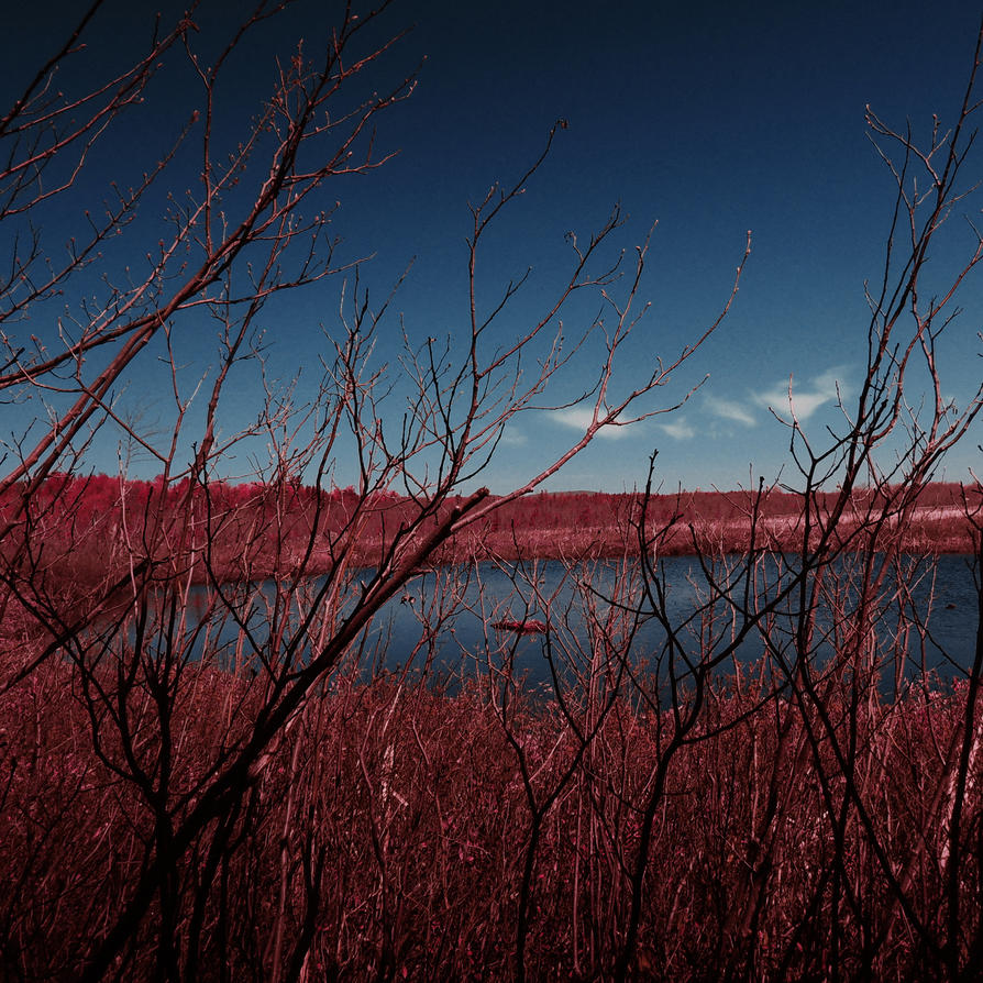 Red chaos by jfdupuis