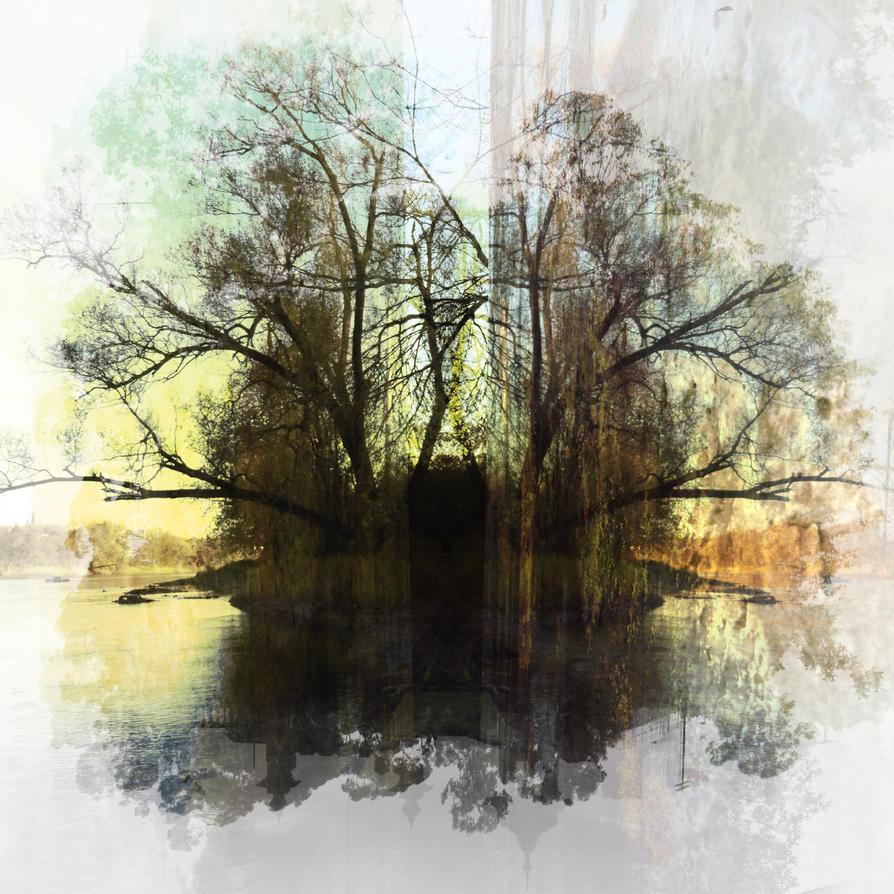 Mystic tree by jfdupuis