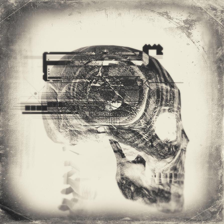 Skull 66 by jfdupuis