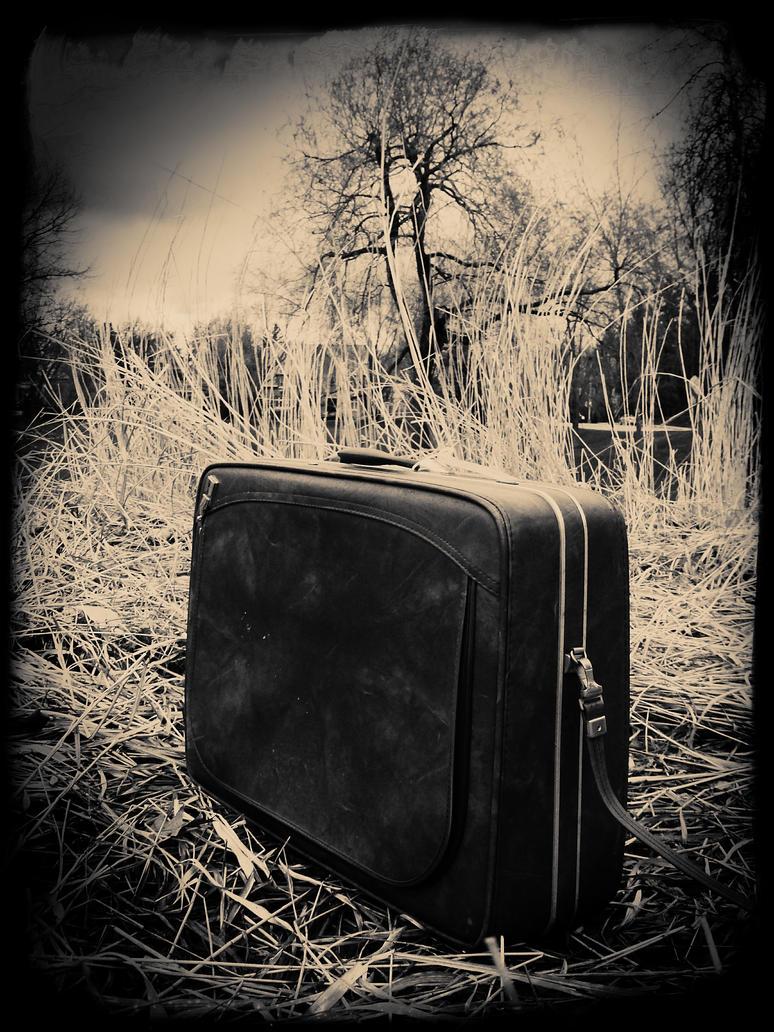 Suitcase by jfdupuis