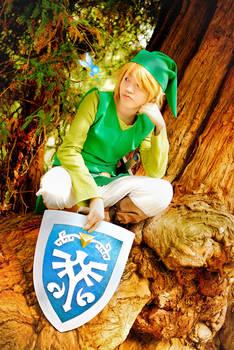 The Legend of Zelda - Mojo's Messenger