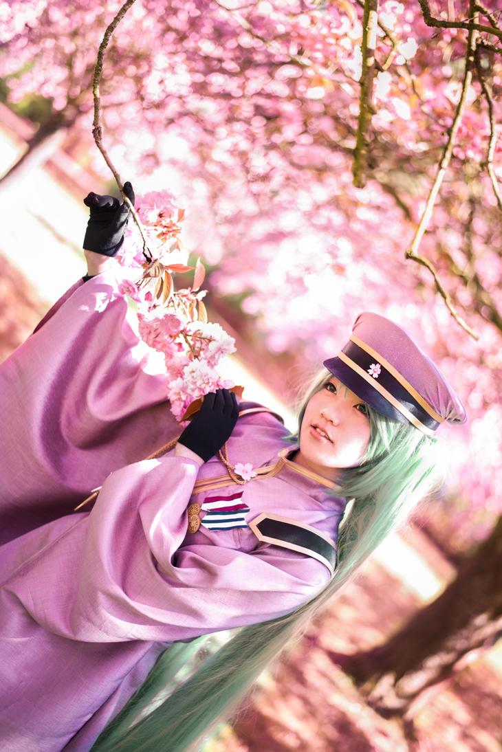 Senbonzakura - Hanabira by TrustOurWorldNow