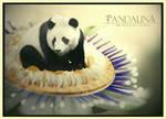 Pandalina