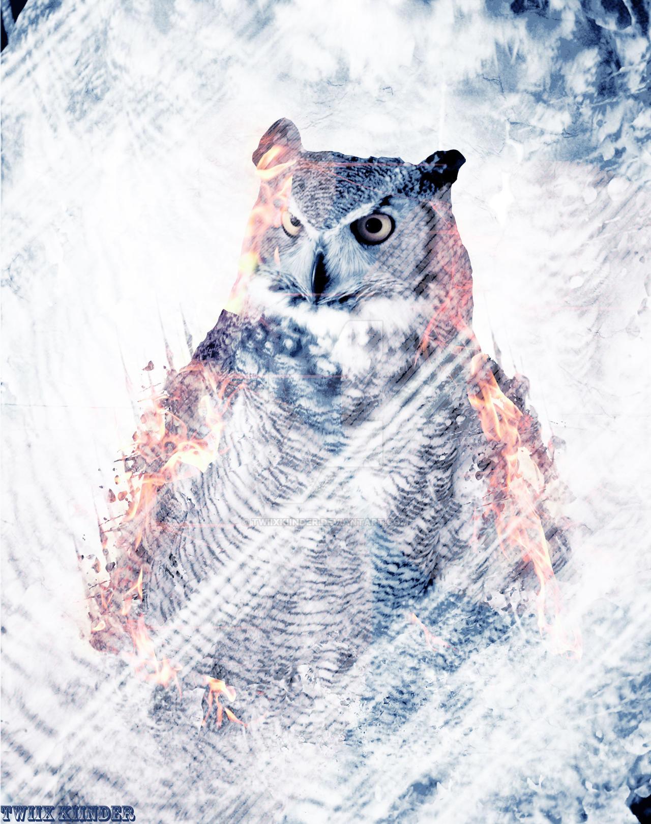 Owl 3 by TwiixKiinder