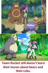 Of Team Rocket and Bears by zigaudrey