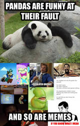 Pandas and Memes by zigaudrey