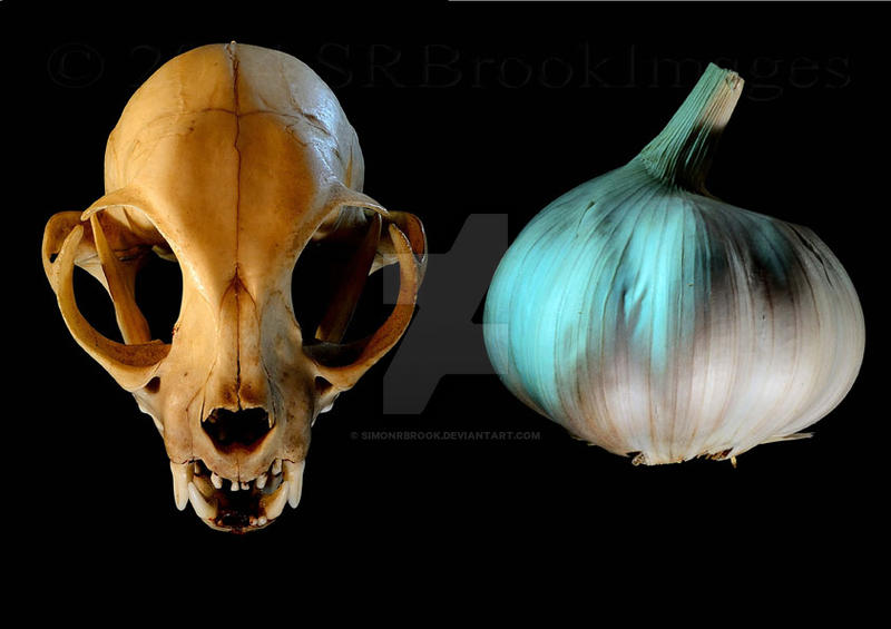 Garlic In Cat Food For Fleas