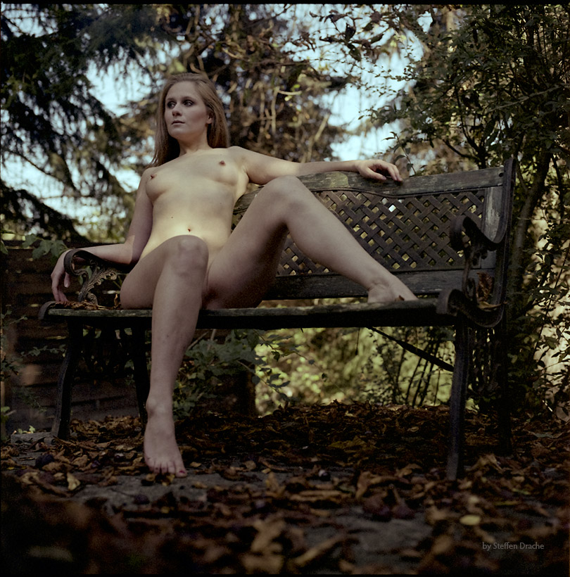 Fall. by draechlein
