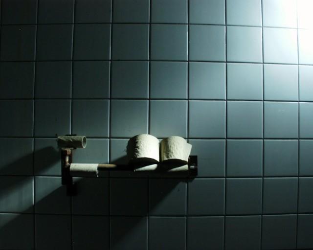 http://fc00.deviantart.com/fs38/f/2008/337/6/c/Toilet_Paper_by_Des_Schatten_Schelm.jpg