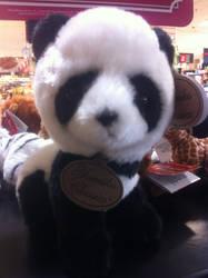 Panda Petling by Miqsh