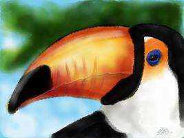 Toucan by digitalchet