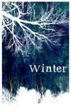 Winter by viantoART