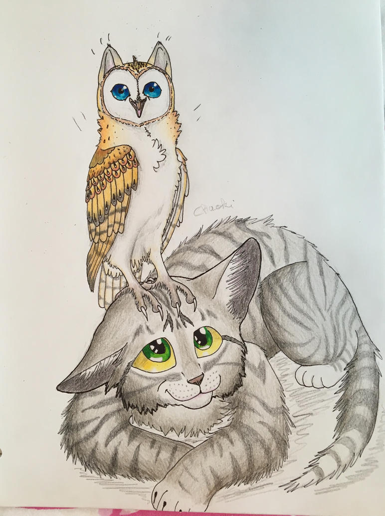 funny owl drawing - photo #31