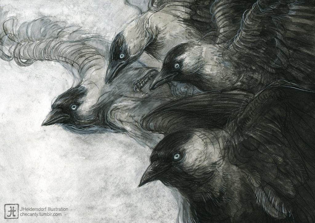 Jackdaws by Checanty