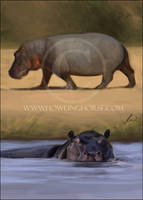 Hippo Card by howlinghorse