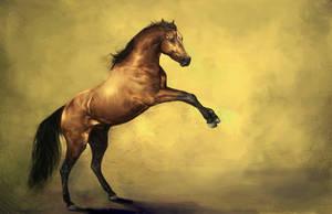 Arabian Mozart by howlinghorse