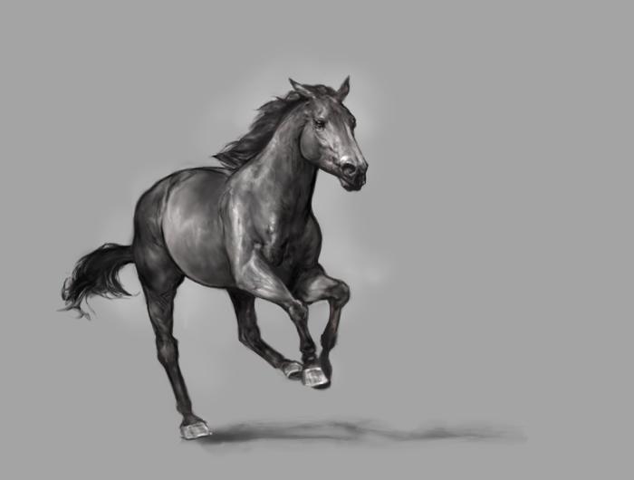 TB Greyscale Study 2 by howlinghorse