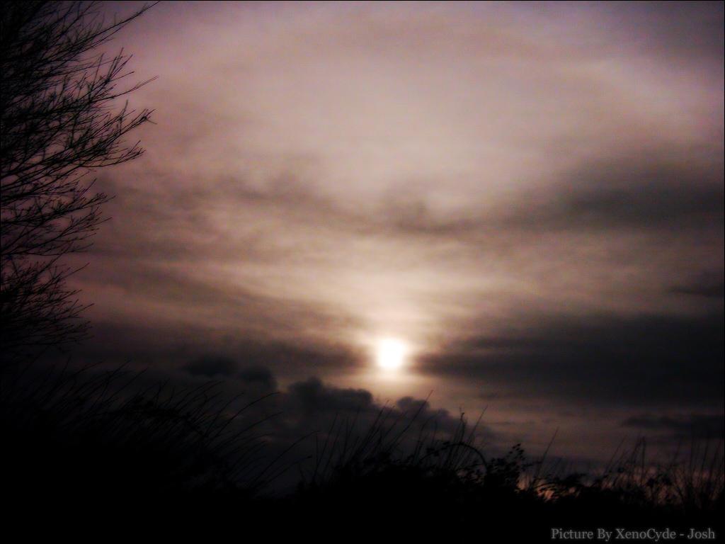 SunSky by recoil221