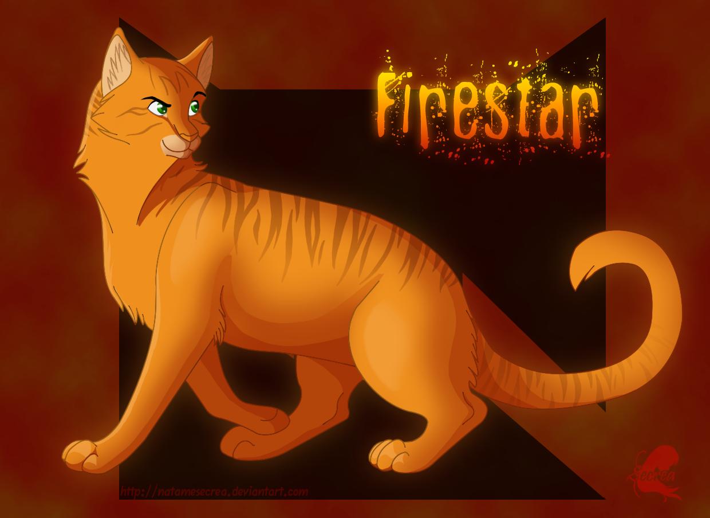 Warrior Cats Firestar Recieving Skywatcher S Prochecy