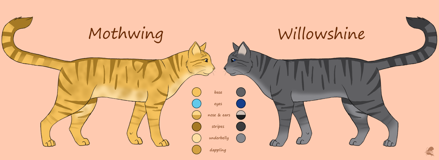 Warrior Cats Mothwing And Willowshine Warrior Cats Jayfeathe...