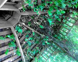 Gazebo Greenery by MyrddinDerwydd