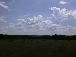 Field of Hay by MyrddinDerwydd