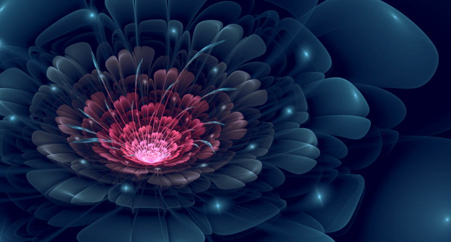 Stan's Flower by f--l--A--r--k
