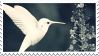 hummingbird stamp by forestveins