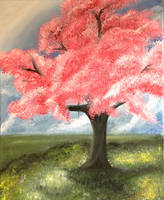 Pink Cherry Blossom Tree by AyshaArts