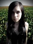 Rachel Field1
