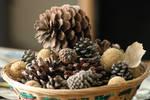 Pinecone Basket