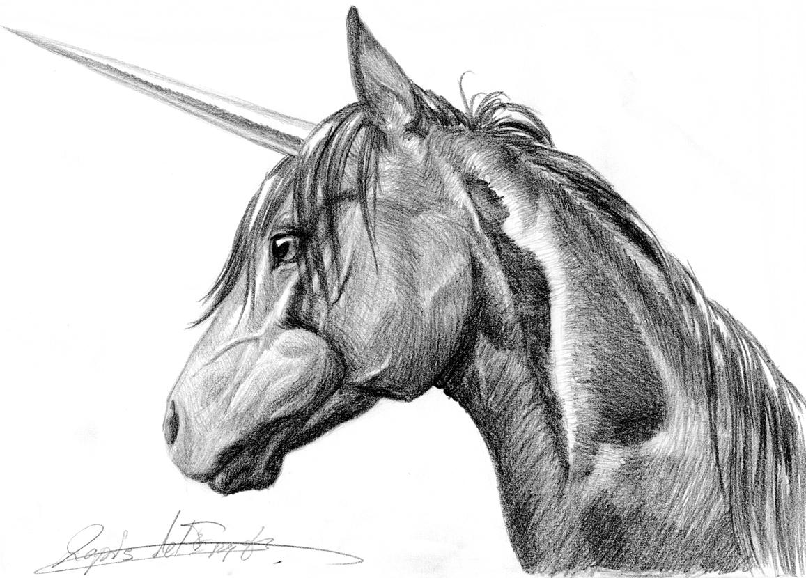 unicorn head by lapis lazuri on deviantart