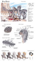 Chromatic Gray Dragon