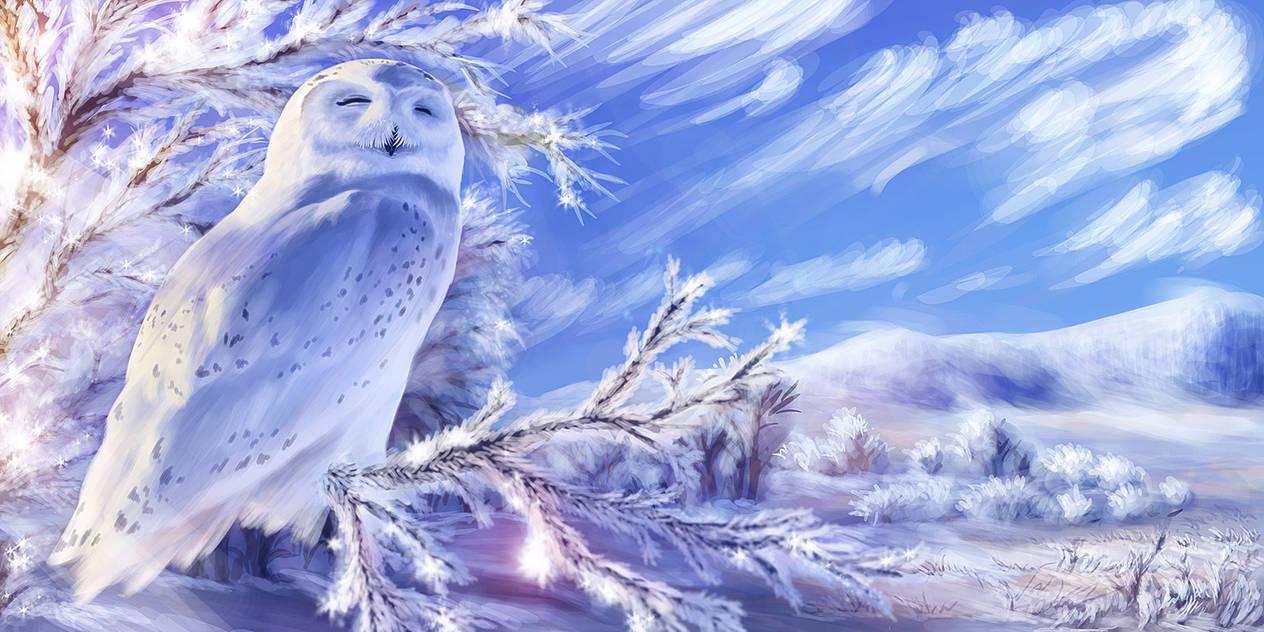 The Splendour of Winter by lapis-lazuri