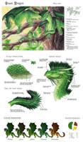 Chromatic Green Dragon