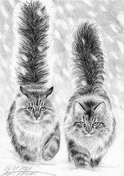 Two of Fluffs