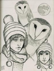 Dreams about Owls part 2