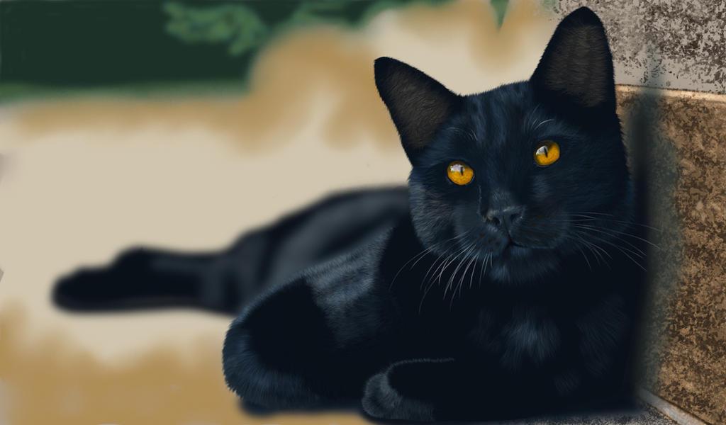 BlackCatFinal by Matsuemon